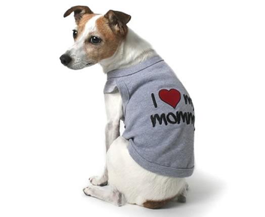 Wholesale dog clothes pet supplies parisian pet for Dog t shirt for after surgery
